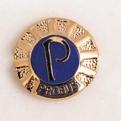 LRG 'P' Lapel Badge 13mm - Gold